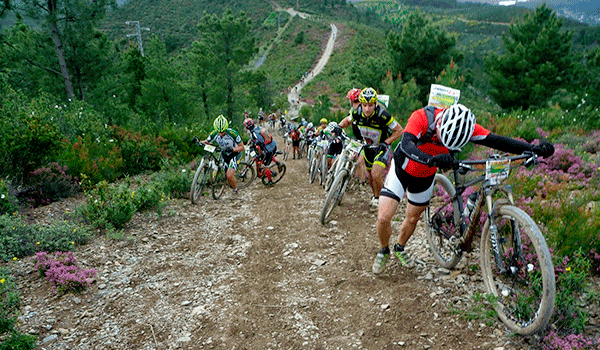 101 km peregrinos